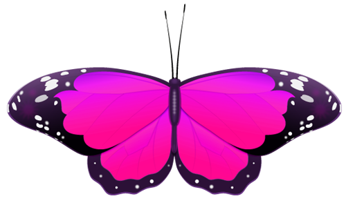 magenta  butterfly clipart
